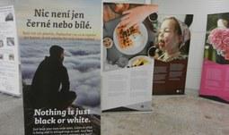 EF se prezentovala na Veletrhu fiktivních firem